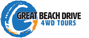 Great Beach Drive 4WD Tours